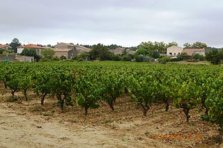 Aigne Commune in Occitanie, France