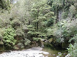 Akatarawa River West in Karapoti Gorge.jpg