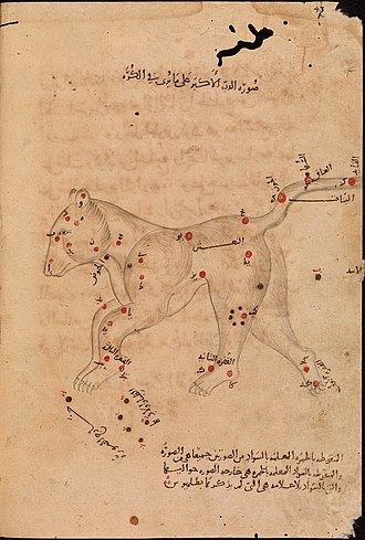"""Book of Fixed Stars - The Great Bear. The familiar seven stars of the """"Big Dipper"""", recorded by Ptolemy, are visible in the rump and tail, but notice they occur as a mirror-image of what we actually see because Al Sufi provided two images of each constellation, one as we see it in the night sky and one as seen here on a celestial globe. The image is from the copy in the Bodleian Library, the oldest copy extant."""