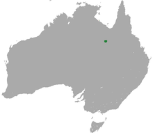 Alexandria False Antechinus area.png