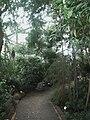 Alter Botanischer Garten Hamburg Gewächshaus.JPG