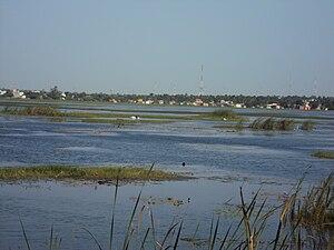 Ambattur - A section of the Ambattur Lake