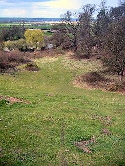 Ampthill Park - geograph.org.uk - 154144