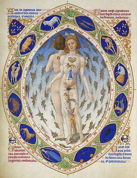 Les Très Riches Heures du duc de Berry#L'Homme anatomique, folio 14.