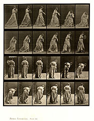 Animal locomotion. Plate 210 (Boston Public Library).jpg