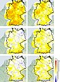 Annual-rain-amounts-for-Germany-based-on-radar-composite-data-RX-for-uncorrected-radar-data-top-panels-corrected-radar-d.jpg