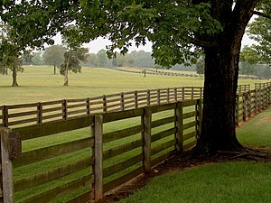 Appomattox County, Virginia - Appomattox County is located in the rolling hills of the piedmont region of Virginia.