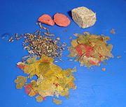 Aquarium - dried food2