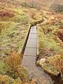Aqueduct on Holne Moor leat.jpg