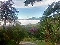 Araras, Petrópolis - RJ, Brazil - panoramio (36).jpg