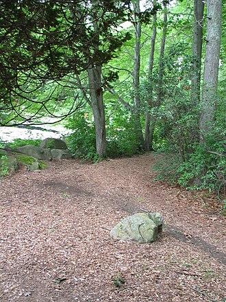 Connecticut College Arboretum - Image: Arb Green Corner