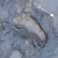 Area A at Happisburgh - footprint 8.png