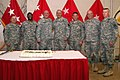 Army Sustainment Command celebrates Army birthday.jpg