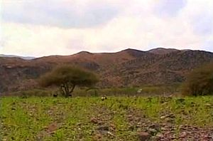 Geography of Djibouti - Arta Mountains