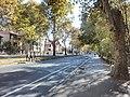 Bělehrad, Voždovac, ulice Bulevar oslobođenja.jpg