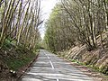 B727 through Brockcleugh Woods - geograph.org.uk - 406402.jpg