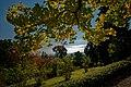 Baden bei Wien - Kurpark - Stadtpark - View SW III.jpg