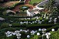 Bahá'í World Centre in Haifa.jpg