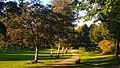 Balance Übungen im Carlisle Park Flensburg - panoramio.jpg