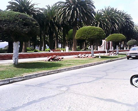 The most of the balaustrades around the Ross Park, in Pichilemu, were destroyed after the 2010 Pichilemu earthquake.