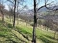 Balići - panoramio (12).jpg