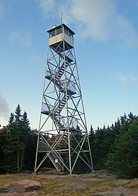 A steel frame tower with a staircase climbing the inside and an enclosed cab on top in front of a stand of evergreen trees