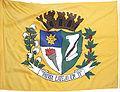 Bandeira de Bilac.jpg
