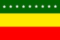 Bandera de Piñas.png