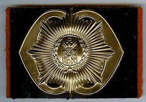 Regiment van Heutsz - Image: Baretembleem Heutsz