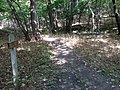 Base of Loess Trail at the Brook - panoramio.jpg