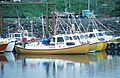 Bateaux de pêche d' Akranes (3).jpg