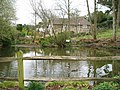 Batts Pond, Batts Pond Lane - geograph.org.uk - 739555.jpg