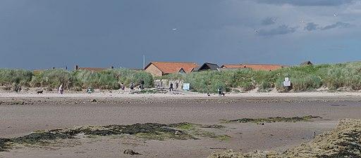 Beadnell MMB 07 Beach