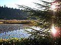 Beaver Lake 2006.jpg