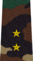 Belarus MIA—12 Ensign rank insignia (Camouflage).png
