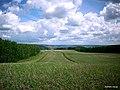 Belebeyevsky District, Republic of Bashkortostan, Russia - panoramio - Matveev Michail (2).jpg