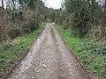 Belvidere Road, Exeter - geograph.org.uk - 1166964.jpg