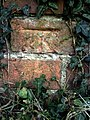 Benchmark on wall at junction of Sellwood Road and Terrington Close - geograph.org.uk - 2071349.jpg