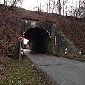 Berkenthin Kaiserbahn ungenutzte Brücke 2014-02-16.JPG