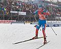 Biathlon Oberhof 2013-057.jpg