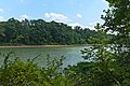 Big Pool on 14 mile Level looking from towpath.jpg