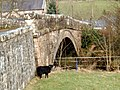 Billy Goat Gruff at Tynron Bridge - geograph.org.uk - 707774.jpg