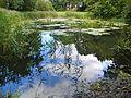 Biotop Schleidenpark (2).jpg