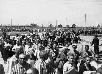 German camps in occupied Poland during World War II - Image: Birkenau Inmates heading towards the barracks in the camp