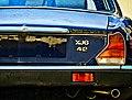 Blue Blue Jaguar (41569514).jpeg