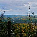 Blueberry Hill (2694331280).jpg