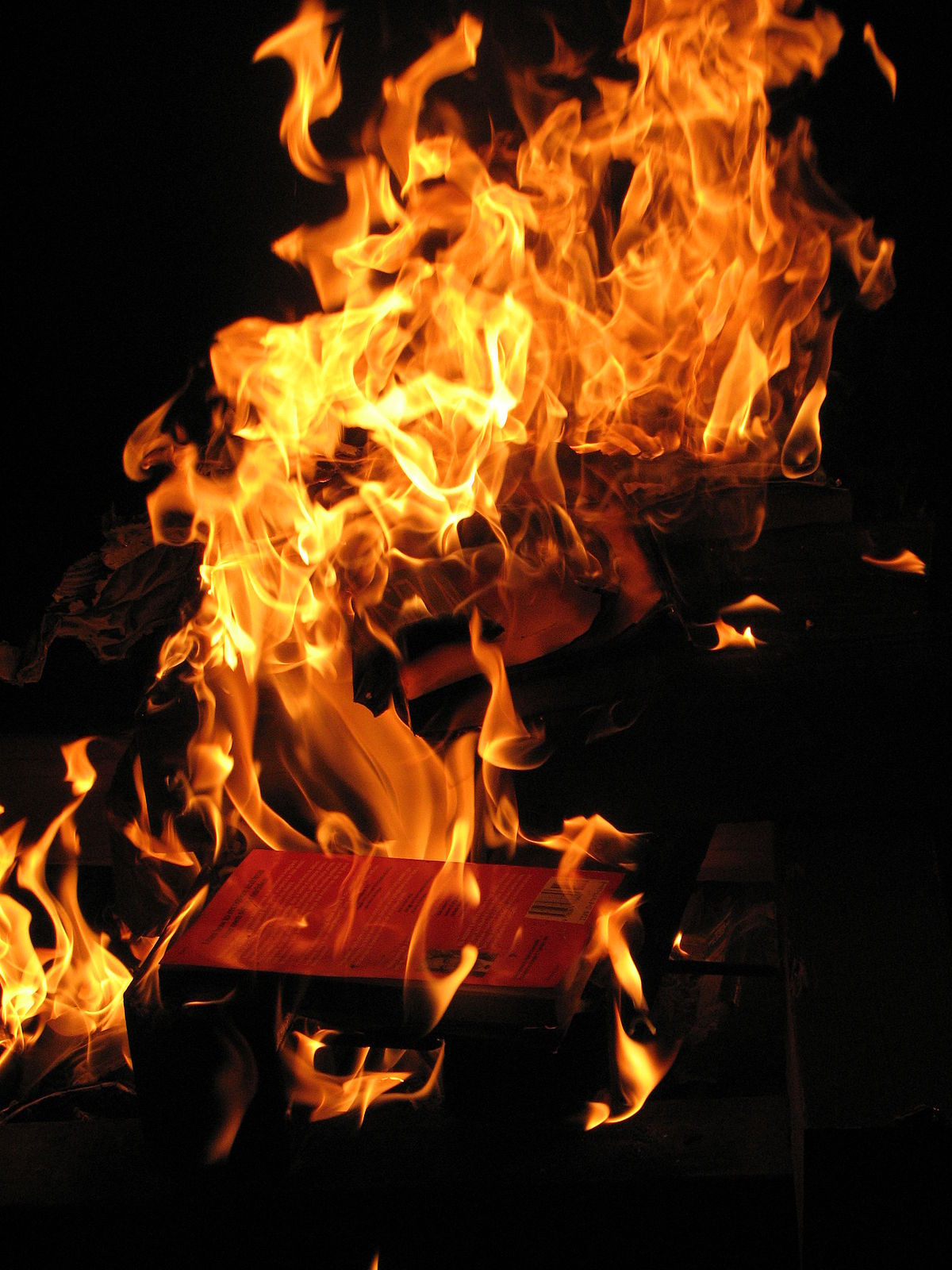 farenheit 451 paper Fahrenheit 451 is the temperature at which book paper burns fahrenheit 451 is a short novel set in the (perhaps near) future when firemen burn books forbidden by the totalitarian brave new world regime.