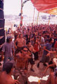 Boom Festival.jpg