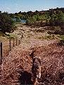 Boretree Tarn, the walk in - geograph.org.uk - 732613.jpg