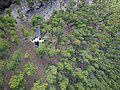 Bosque volcánica - panoramio.jpg